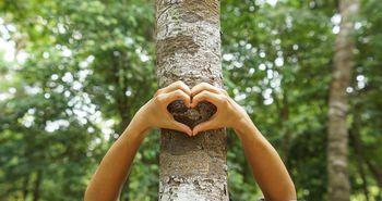 Baumstamm mit Händen die ein Herz bilden